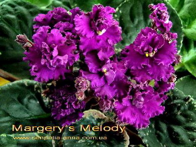 Margery'sMelody8